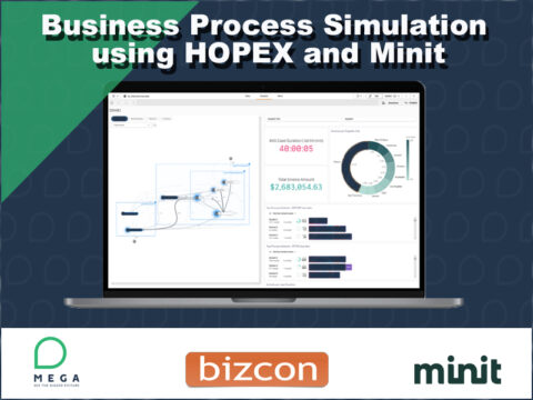 Business Simulation Using Hopex and minit