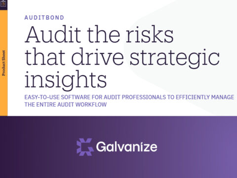 Audit the Risk